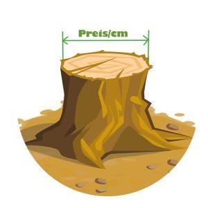 baumstock entfernen preise perfahl